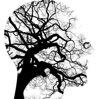 Group logo of Dissociative Disorder